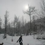 Langlauf Photos