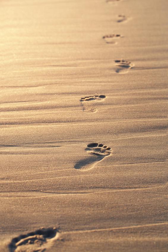 Spuren im Sand.jpg